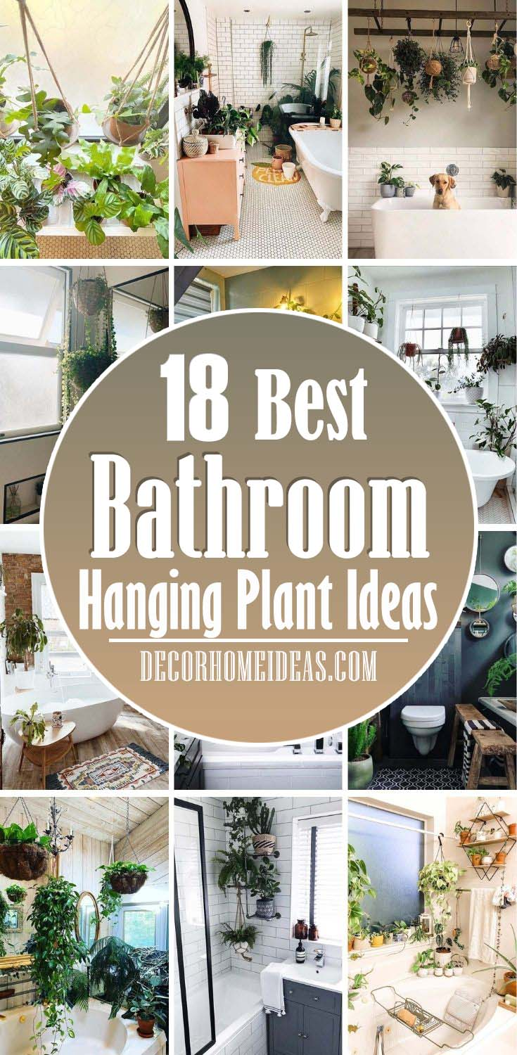 Best Hanging Plant Ideas For Bathroom. Bathroom plants are such a simple and affordable way to update your bathroom, whether it's a single trailing plant on the windowsill or a full green plant wall. #decorhomeideas
