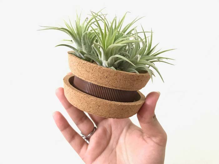 Coasters + Jar Lid Planter #planter #olditems #kitchen #decorhomeideas