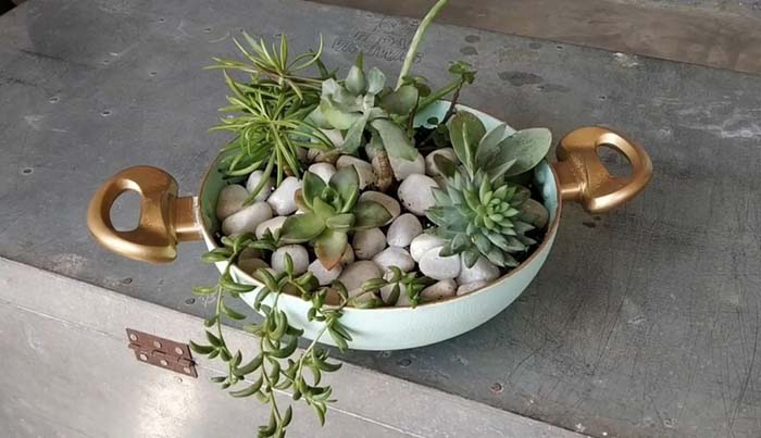 DIY Succulent Planter from an Old Frying Pan #planter #olditems #kitchen #decorhomeideas