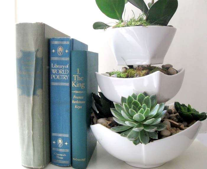 Easy Succulent Planter #dollarstore #diy #homedecor #decorhomeideas
