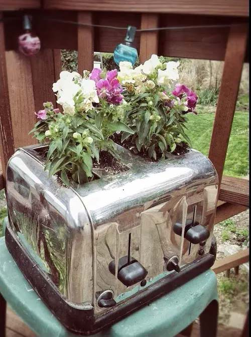 Flowers in a Toaster #planter #olditems #kitchen #decorhomeideas