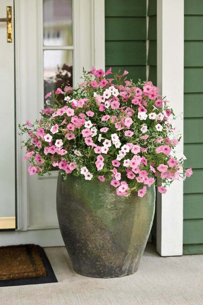 Giant Clay Front Door Flower Pot Design #flowerpot #frontdoor #frontporch #decorhomeideas