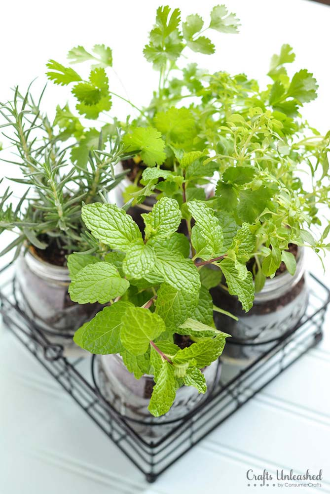 Mason Jar DIY Herb Garden #planter #olditems #kitchen #decorhomeideas