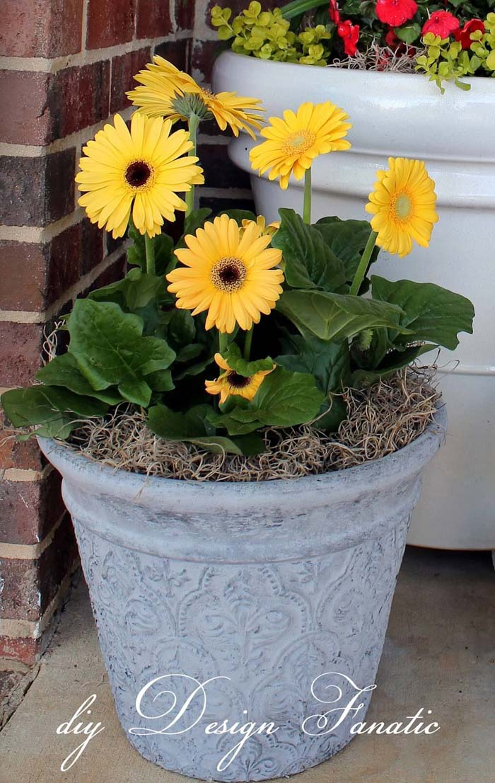 Spray Painted Textured Flower Pot #flowerpot #frontdoor #frontporch #decorhomeideas