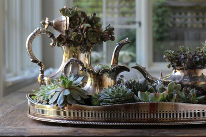 Succulents in a Vintage Silver Tea Set #planter #olditems #kitchen #decorhomeideas