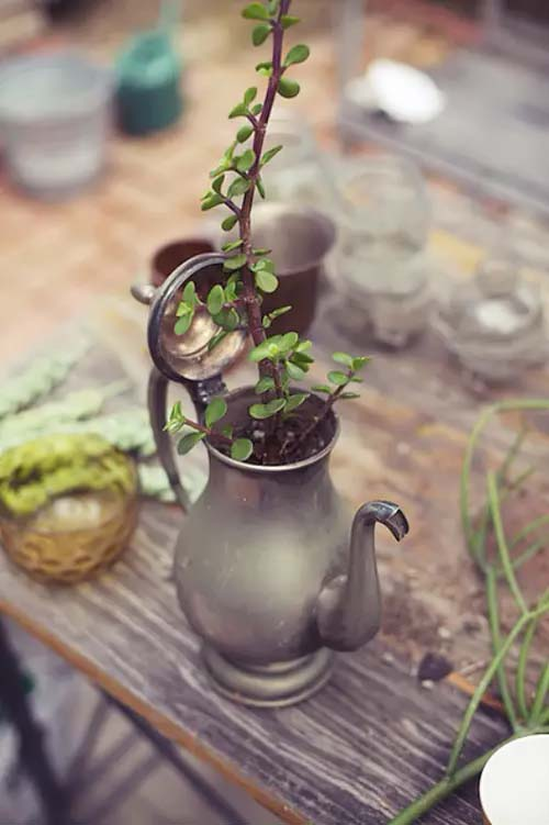 Tea Pot Planter #planter #olditems #kitchen #decorhomeideas
