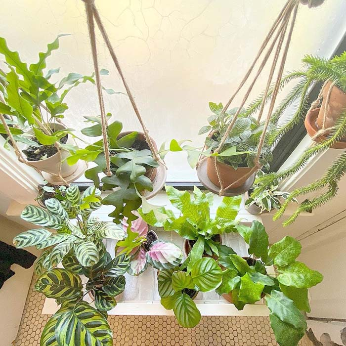 Twine Hanging Platforms and Potted Plants #plants #bathroom #hanging #decorhomeideas