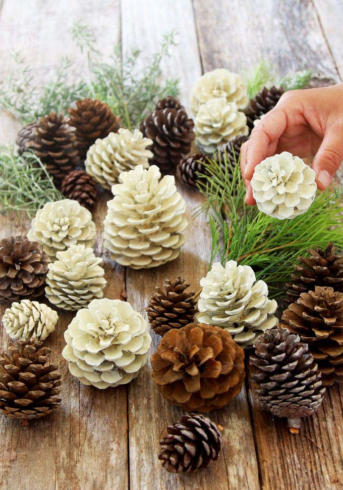 Bleached Pinecones Christmas Decor