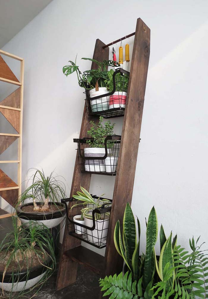 How To Build Vertical Ladder Plant #ladderplanter #decorhomeideas