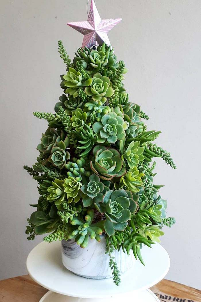 Succulent Christmas Tree #Christmas #Christmastree #nontraditional #decorhomeideas
