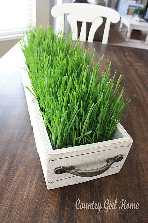 Add Some Color with a Grassy Centerpiece #spring #decor #decorhomeideas