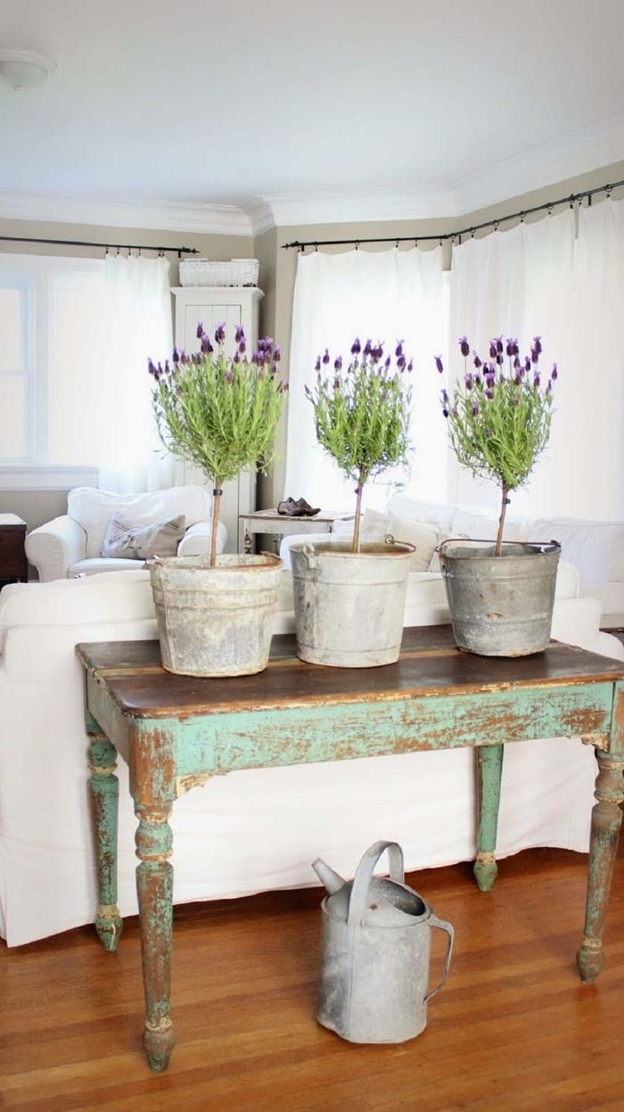 Bring Colorful Potted Plants Indoors #spring #decor #decorhomeideas