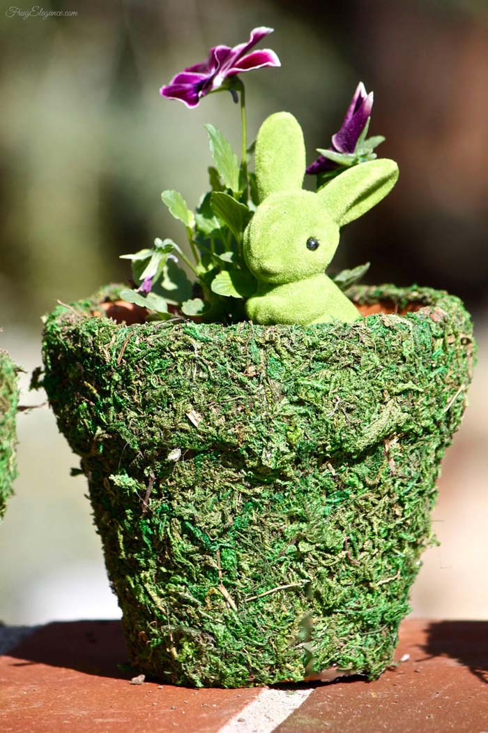 Bring On The Green With Extra Moss #spring #planter #decorhomeideas