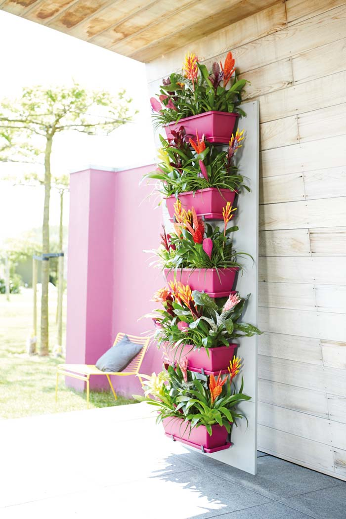 Bright Pink Adds a Pop of Color and Accents Vibrant Bromeliads #verticalgarden #garden #decorhomeideas