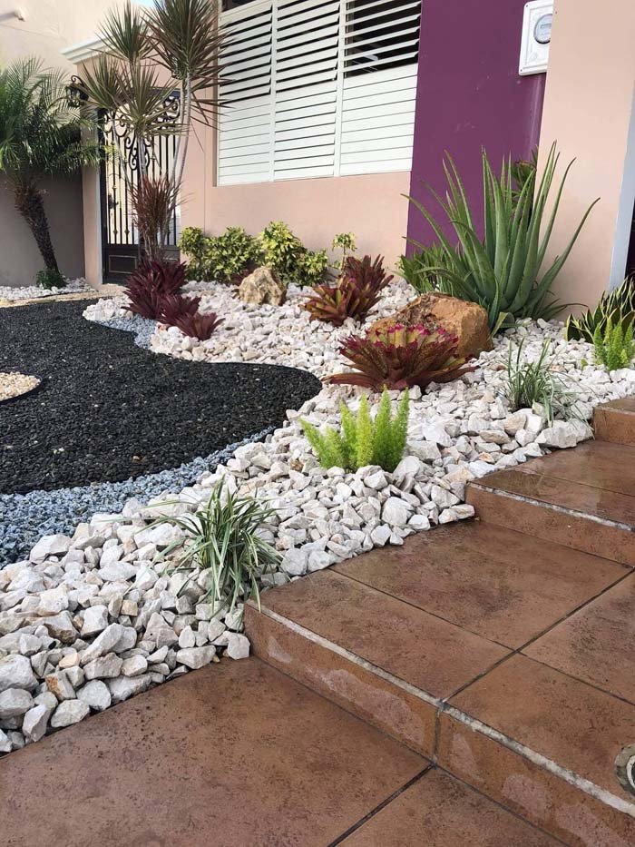 Protect Unique Plants with Rock Hardscaping #smallgarden #gardendesign #decorhomeideas