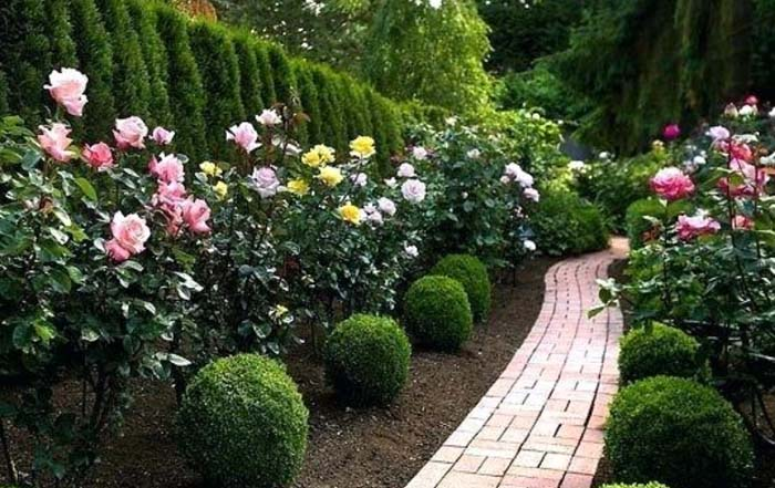 The Sensual Scent of a Rosed Pathway #rosegarden #roses #decorhomeideas