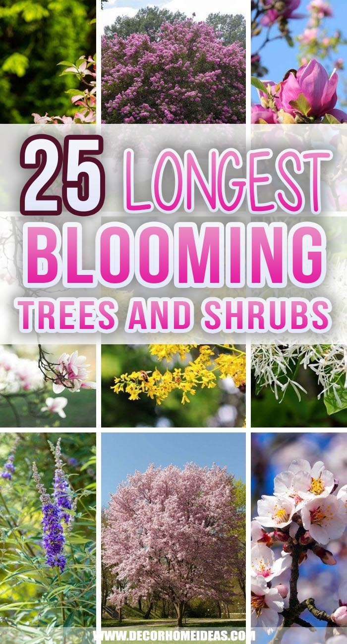 Best Longest Blooming Trees And Shrubs. Make your garden more vibrant with these amazing flowering trees and shrubs,. Choose your favorite and plant it today. #decorhomeideas