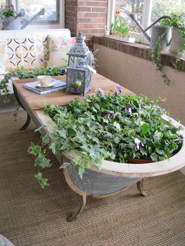 Cast Iron Tub with Pansies and Ivy #repurposedplanter #repurposedcontainer #decorhomeideas