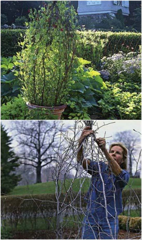 Cheap And Easy DIY Potted Branch Trellis #plantsupport #tomatocage #decorhomeideas