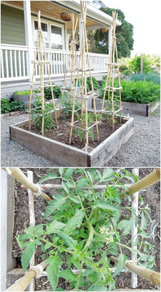 DIY Bamboo And Twine Towers #plantsupport #tomatocage #decorhomeideas