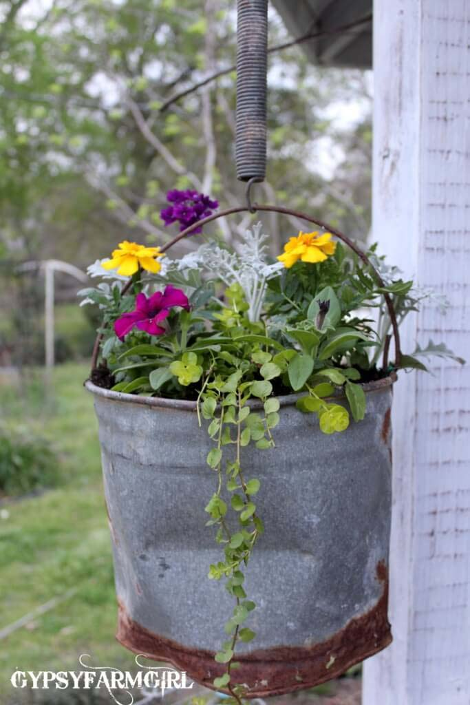 Pail Hung by an Old Spring #repurposedplanter #repurposedcontainer #decorhomeideas