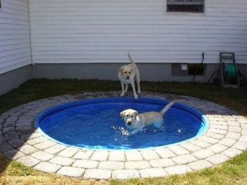 Place Your Pool in the Ground #poolhacks #diypool #decorhomeideas
