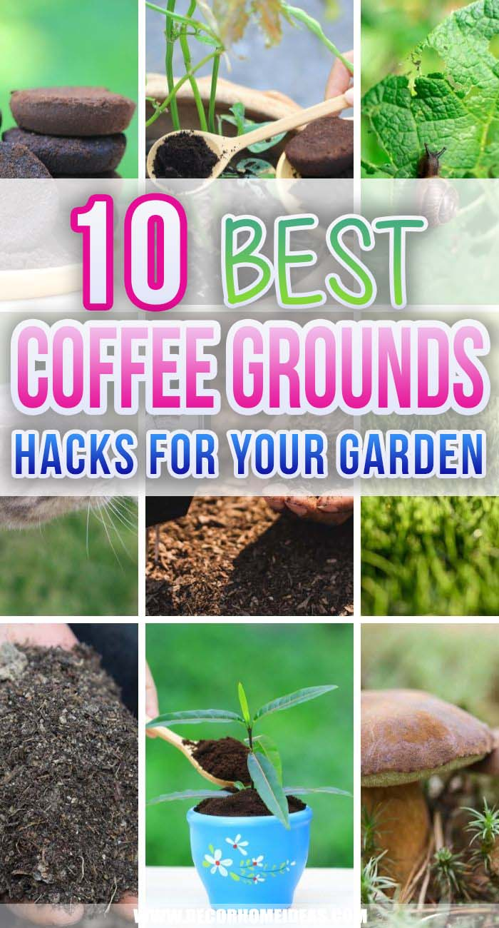 Best Ideas How To Use Coffee Grounds In Your Garden. There are plenty of ways you can reuse your coffee grounds around the house and in your garden. Coffee grounds are used as fertilizers, mulching or pest repellents. #decorhomeideas