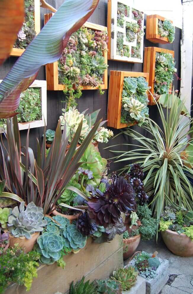 Succulents Overflowing from Framed Boxes #gardenfencedecoration #decorhomeideas