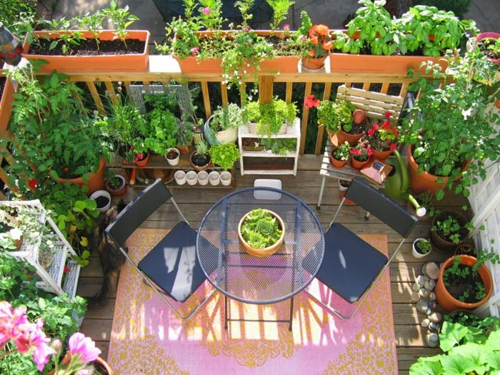 Dinner Garden #balconygarden #decorhomeideas