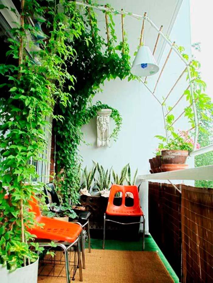 Tropical Privacy #balconygarden #decorhomeideas